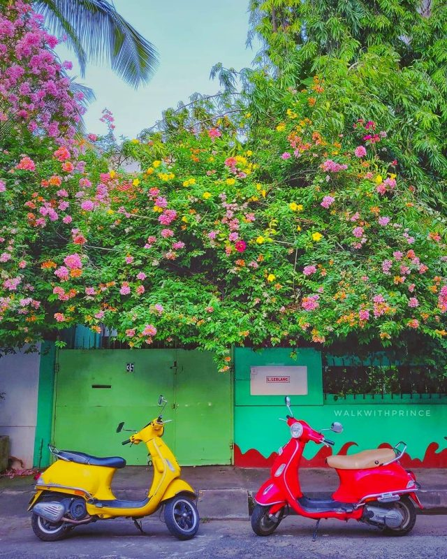 most beautiful attraction to see in Pondicherry